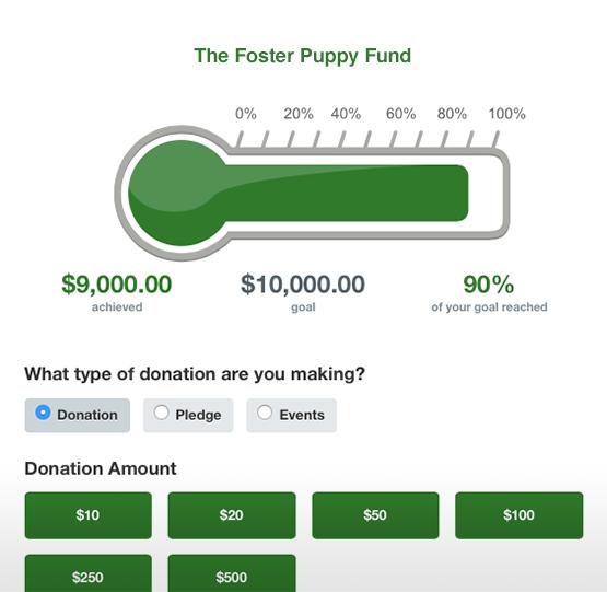 qgiv non profit screenshot